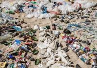 UNEP/Shawn Heinrichs